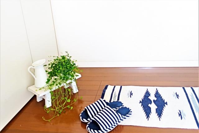 玄関のスリッパと観葉植物